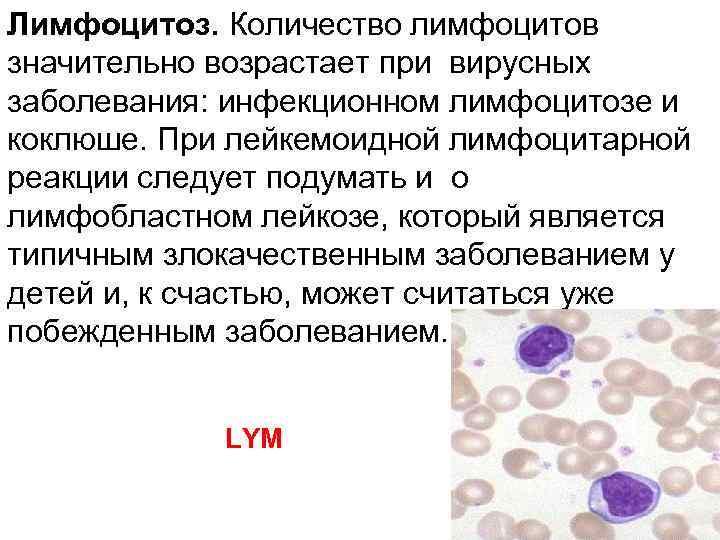 Лимфоциты повышены у ребенка: причины и лечение
