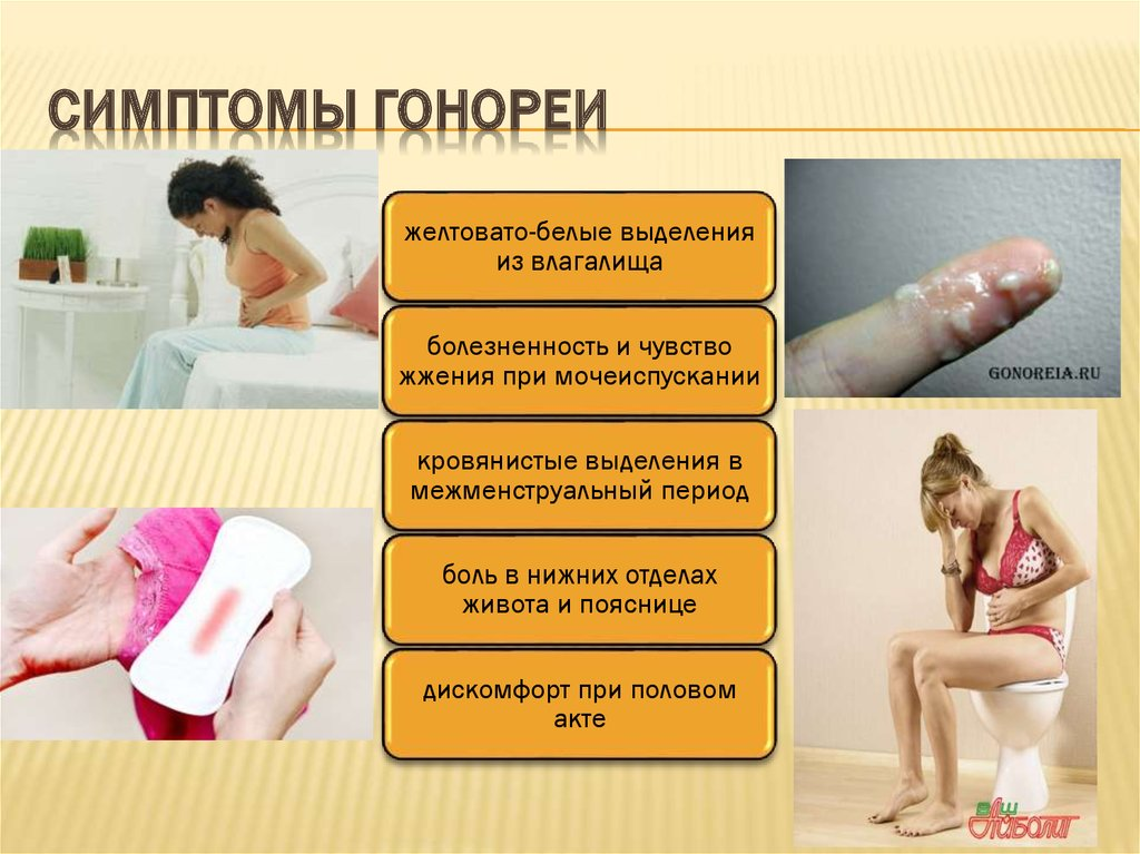 Можно ли заразится простатитом половым путем самое эффективный препарат от простатита