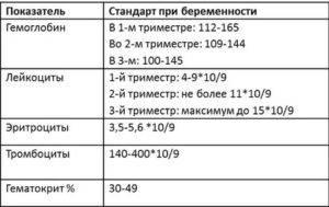 Роль тромбоцитов и их норма в крови у женщин: расшифровка результатов анализа