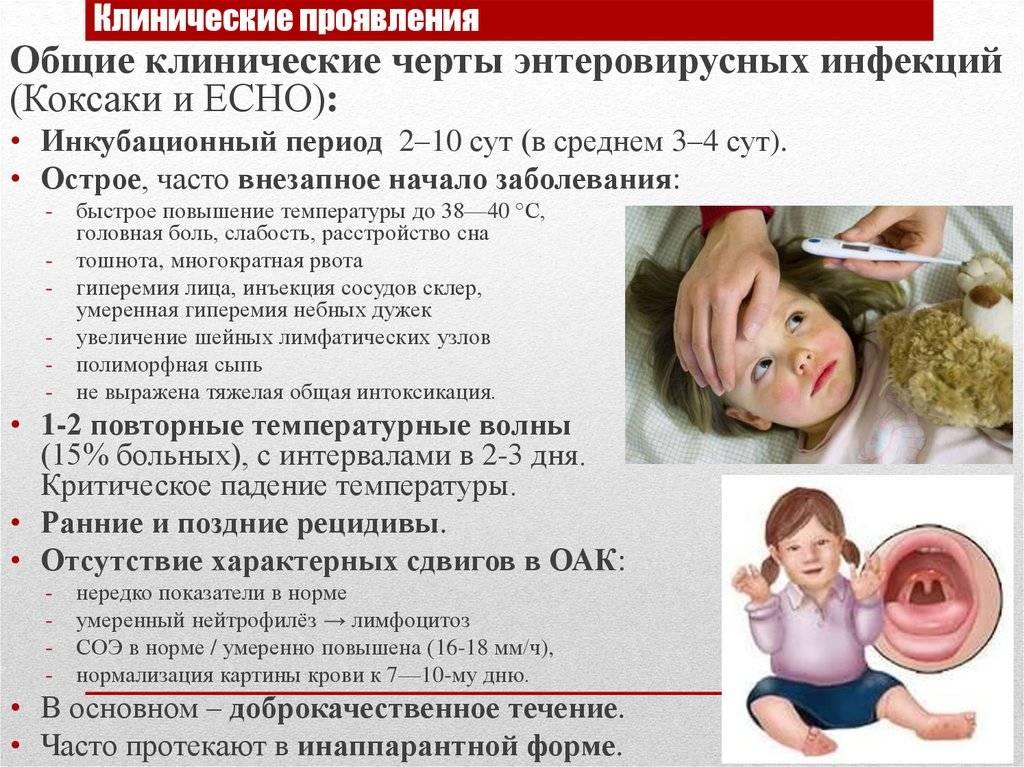 Энтеровирусная инфекция у подростков симптомы и лечение | целебные свойства растений