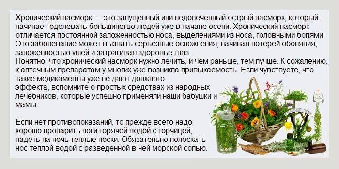 Лекарственные травы от простуды: какие применять, рецепты, показания и противопоказания