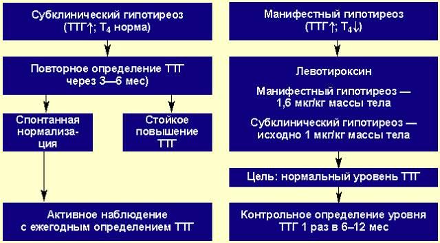 Тиреоглобулин после удаления щитовидной железы: норма, повышен ттг, уровень, причины