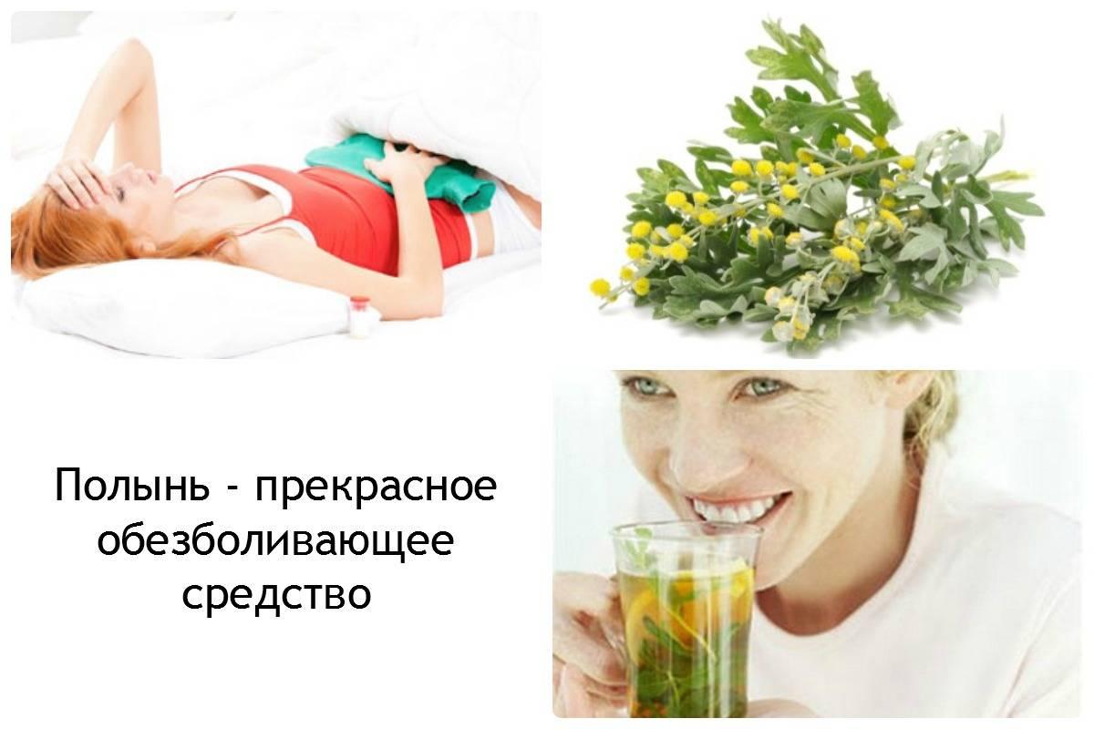 Крапива - лечебные свойства в гинекологии при кровотечении