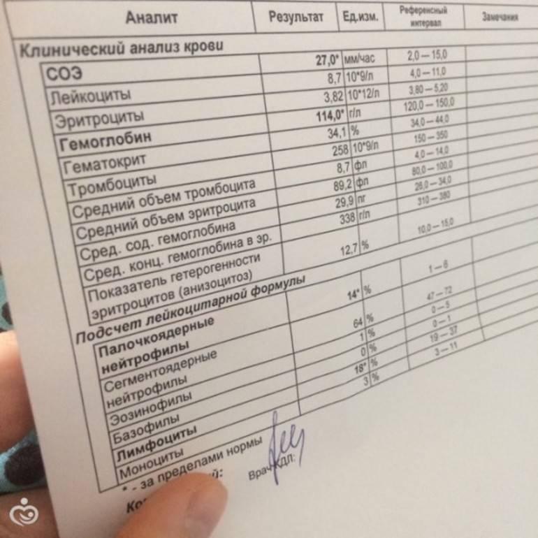 Иммунограмма: расшифровка, что показывает, норма, таблица с результатами | азбука здоровья