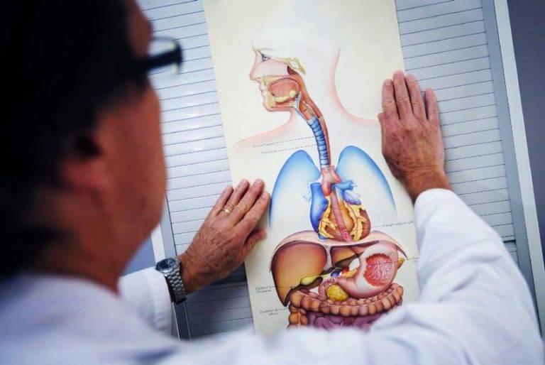 Гастриты. острые и хронические гастриты. лечение гастритов.
