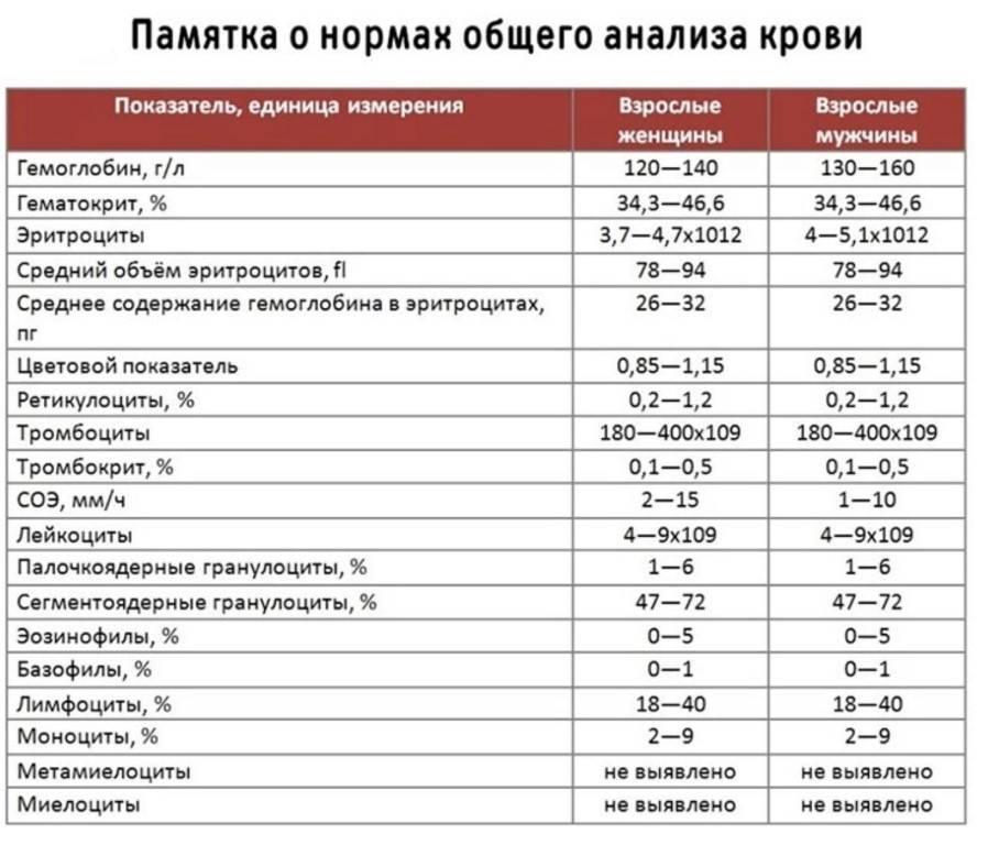 Тромбоциты – норма у женщин по возрасту. таблица при беременности, натощак. лечение, диета — medists.ru