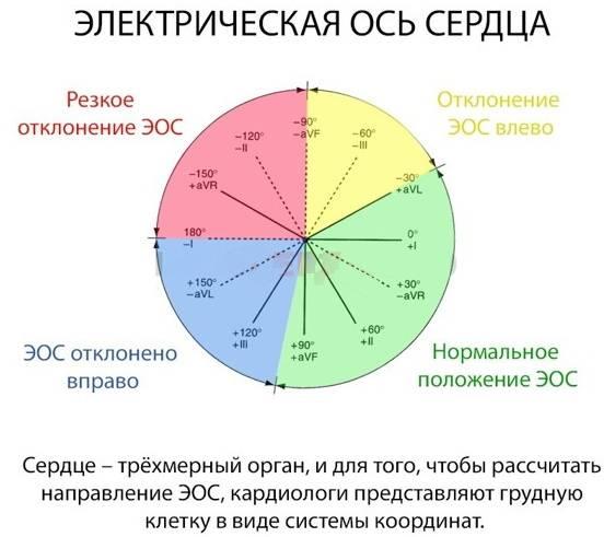 Промежуточное положение эос - кругмедика