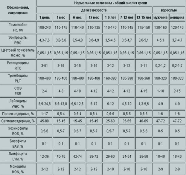 Норма тромбоцитов в крови у женщин: таблица по возрасту, строение и продолжительность жизни клеток