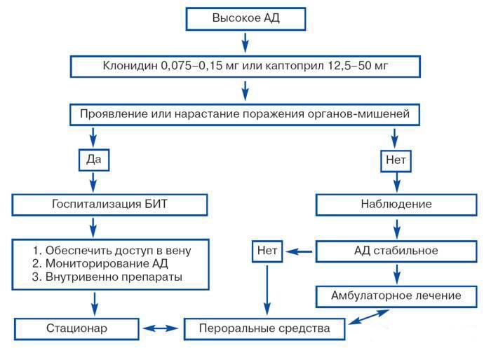 Алгоритм неотложной помощи при гипертоническом кризе