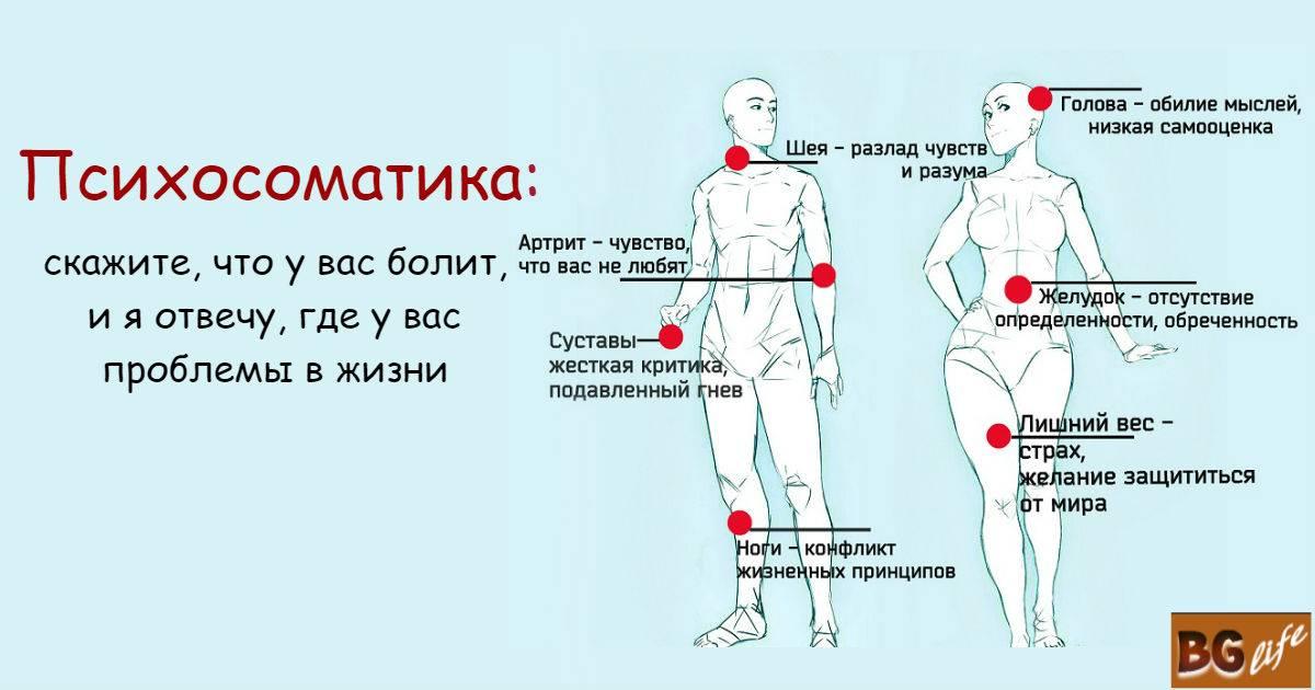 Психосоматика: органы пищеварения